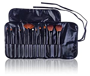 SHANY Professional 12 - Piece Natural Goat and Badger Cosmetic Brush Set with Pouch - Black by SHANY
