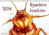 Spaniens Insekten (Wandkalender 2014 DIN A4 quer): Wunderschöne Aufnahmen spanischer Insekten, von real bis kunstvoll bearbeitet! by AnBe (Monatskalender, 14 Seiten)