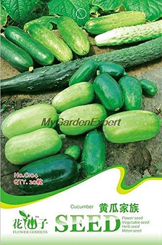 Graines de vente chaud 20pcs Mix concombre, concombre Différentes graines mixtes, Semences Potagères, Bricolage Jardin des plantes