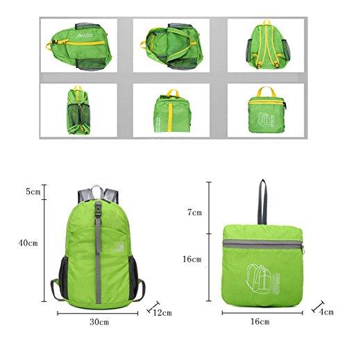 Butterme Packable Handy ultra Leggero Campeggio d'escursione Esterno Viaggio Ciclismo Arrampicata Guida Sportiva Daypack Impermeabile Pacchetto di Nylon Zaino Borsa per donne e uomini (Nero) Viola scuro