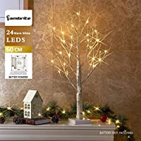EAMBRITE Mini Birch Twig Tree Lights Ornamental Tree with 24 Warm White LEDs Battery Operated Tabletop Decoration for Christmas Home Party Wedding(60cm/2ft)