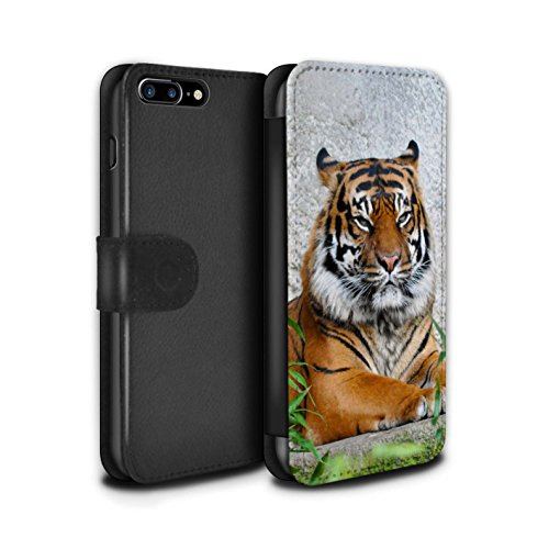 Stuff4 Coque/Etui/Housse Cuir PU Case/Cover pour Apple iPhone 4/4S / Loup Design / Animaux sauvages Collection Tigre