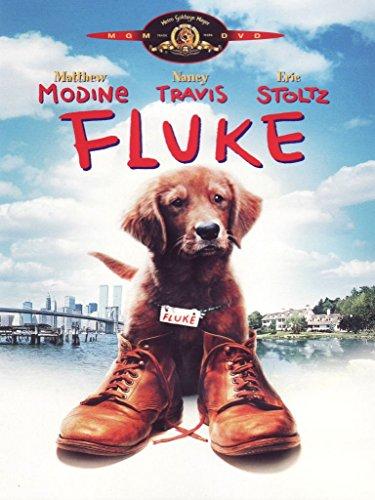 Fluke [IT Import]