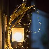 ZISTE SchimmerLichterkette, Innen Dekorative Silber-Draht-Leuchter für Schlafzimmer, Innenhof, Garten, Kinderwagen, Weihnachtsbaum, 60 LEDsLichter, 10ft, Reis-Form, Warmweiß