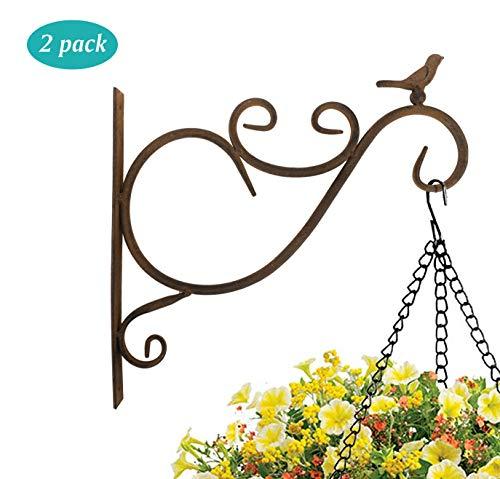 Lewondr Hanken für Blumenampel, 2 Stück Retro Vogel Schmiedeeisen Wandhaken Aufhänger Halterung mit Schrauben für Blumentöpfe Pflanzen Hängekörbe, Garten Balkon Außen Dekor -