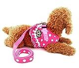 Ranphy Kleine Hunde Hundegeschirr mit Leine Polka Punkt Brustgeschirr Verstellbare Haustier Geschirr für Katze Rosa Größe L