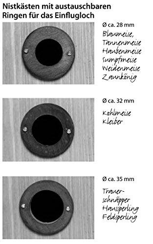 dobar 22519e Massiver großer Nistkasten mit Giebel als Räuberschutz, 3 variable Einflug-Lochgrößen, Diameter 28 / 32 / 35 mm - 4