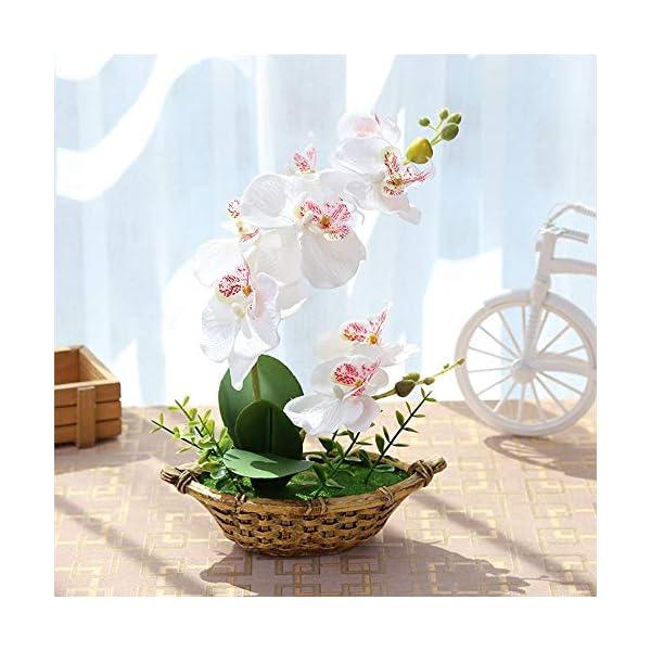 Womdee Phalaenopsis Orquídea Artificial Bonsai 27cm/10.6in, Maceta Orquídeas Artificial Flores Permabloom Artificial…
