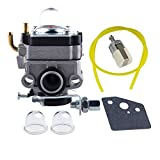 HIPA Carburateur et Joint Membrane Filtre Pour Honda FG100 GX22 GX25 GX31 GX35 4 temps # 16100-ZM5-803 Walbro WYL-19 WYL-19-1