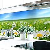 Küchenrückwand Blumenwiese Premium Hart-PVC 0,4 mm selbstklebend 340x51cm