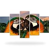 Bilder Papageien Vögel Bild auf Leinwand 5-Teilig: 175x100 cm