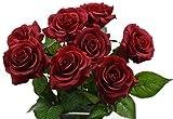 FiveSeasonStuff® 10 Stück Gefühlsecht (Real Touch) Rosen Seiden künstliche Blumen 'Blütenblätter fühlen und sehen wie frische Rosen' Bouquet Dekoration Blumenarrangement, ideal für die Hochzeit, Braut, Party, Zuhause, Büro Dekor DIY (# 6 Rot)