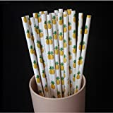 HENGSONG Paper Drinking Straws Pineapple Pattern for Party Bar Birthday Wedding Christmas Decoration, 25PCS