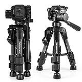 Zakitane Caméra Mini Trépied Compact Bureau Trépied pour Reflex numérique Tabletop, SLR, Téléphone, Spotting Scope, Caméscope et Mini vidéo (Noir)