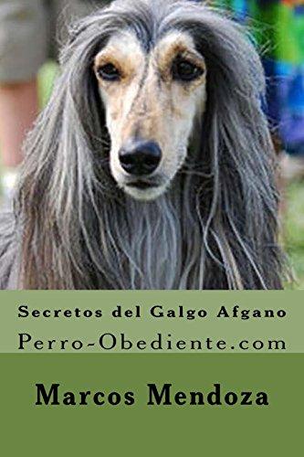 Secretos del Galgo Afgano: Perro-Obediente.com