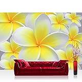 Fototapete 254x184 cm PREMIUM Wand Foto Tapete Wand Bild Papiertapete - Orchideen Tapete Blüten Orchidee gelb - no. 274