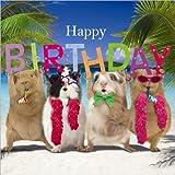 "Guinea Pigs Birthday Card ""Birthday Party"""