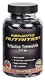 Tribulus Terrestris 775mg - Mehr Testosteron Dadurch Einen Höheren Muskelaufbau Und Eine Stärkere Fettverbrennung - Steigert Die Libido - 120 Kapseln - Made in Germany