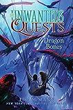 Dragon Bones (The Unwanteds Quests, Band 2)
