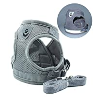Nrpfell Dog Vest Harness, Dog Vest with Lead Soft Dog Harness, Summer Breathable Dog Air Harness No Pull for Small Medium Dog (Gray, M)