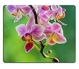 Liili Mauspad Natürliche Gummi Mousepads Schöne Orchidee Blume Blumenstrauß Sonne scheint hell 29199766