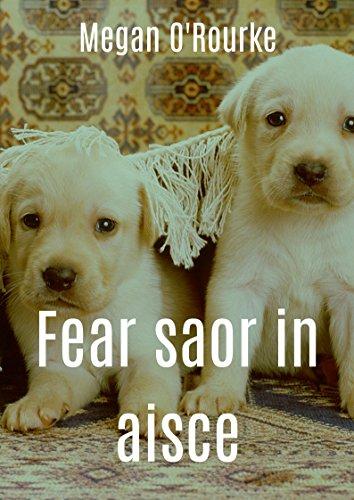 Fear saor in aisce (Irish Edition) por Megan  O'Rourke