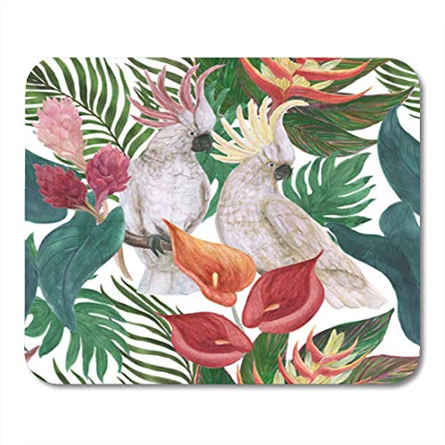 HOTNING Gaming Mauspad Watercolor Painting Seamless Pattern with White Cockatoo Birds and Tropical 11.8