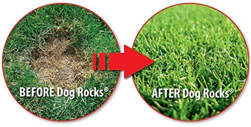 Dog Rocks Urine Patch Preventer 100g Bag 2