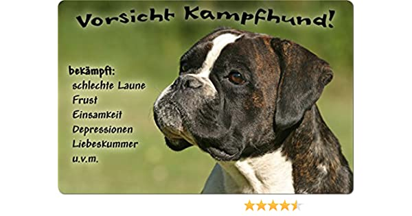 wetterfestes Metallschild Petsigns Hundeschild mit Deutschem Boxer Willkommen DIN A3