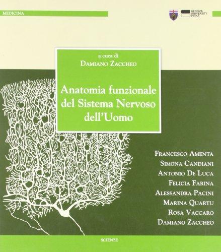 anatomia funzionale del sistema nervoso dell'uomo