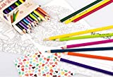 36 Adult Colouring Pencils, Premium Art Coloured Drawing Pencils for Adults and Professionals