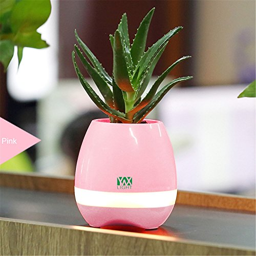 Sdsa8da Smart Touch Capteurs LED Nuit Lumière LED Musique Bluetooth Pot de Fleurs Lumière Vase Fleur Jouer Le Piano Décoration Planter Haut-Parleur Lampe à Induction Solaire (Couleur : Pink)