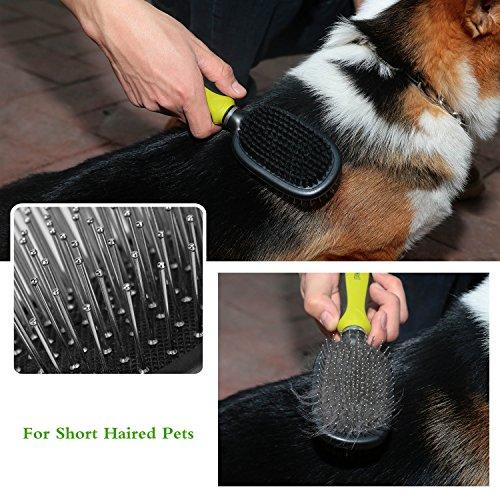 Zoom IMG-2 doppia spazzola per cani 2