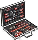 Meister Werkzeugkoffer 24-teilig - Werkzeug-Set - Werkzeug für den täglichen Gebrauch/Werkzeugkoffer befüllt/Werkzeugset/Werkzeugbox komplett mit Werkzeug/Werkzeugsortiment/8973730
