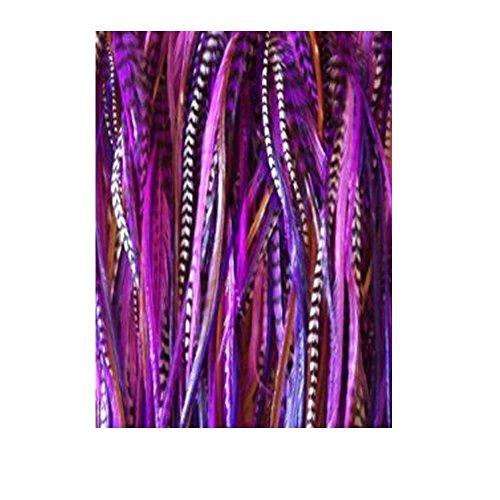 Sexy Sparkles Extensions de cheveux plumes pour femmes Remix 15,2 cm -28 cm Les plumes pour l'extension comprennent 2 Micro Perles en silicone et 5