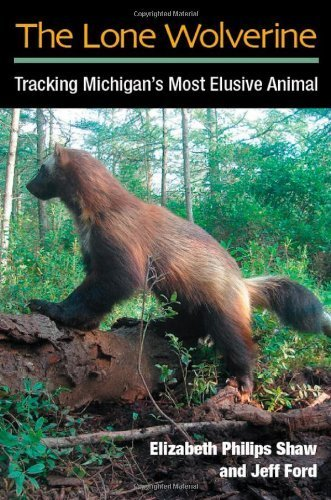The Lone Wolverine: Tracking Michigan's Most Elusive Animal by Elizabeth Philips Shaw (2012-03-30)