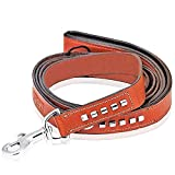 #10: Petsup Love Care Happiness Dog Leather Leash Flat Lead Belt with Padded Soft Handle (1inch Wide, 72inch Long, Tan/Black)