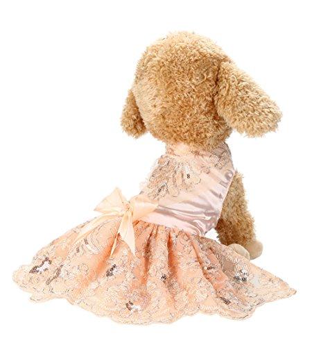 VENMO Pailletten Spitze Bestickt Hund Kleid Prinzessin Brautkleider Gestickte Hundekleider Hochzeit Prinzessin-Kleid für Hunde Pet Rock Kleidung Supplies