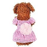 Hawkimin adidog xs Haustier-Hundekatze-Kleid-Plaid-Blumendekoration Spitze-Prinzessin Summer Breathable Dress Clothes