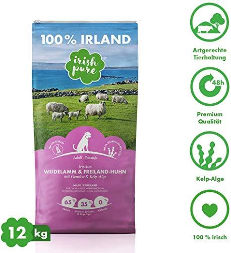 Irish Pure Adult Weidelamm & Freiland-Huhn mit Kelp-Alge - Premium Trockenfutter für Hunde, Hoher Fleischanteil, Getreidefrei, Sensitiv, Hundetrockenfutter, Hundefutter für alle Rassen... (12kg)
