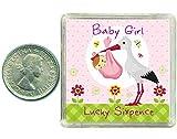 Baby Girl Gift Lucky Sixpence moneta, perfetta idea regalo per nascita o una bambina