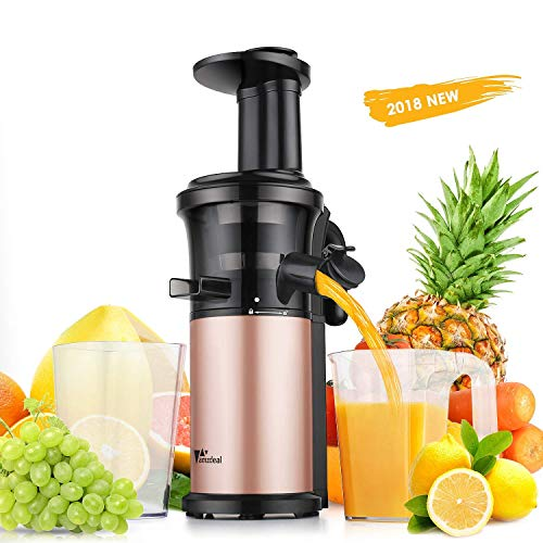 Juicer Amzdeal Slow Juicer Masticating Juicer Machine Cold Press Juicer BPA Free for High Nutrient Fruits and Vegetables Juice Easy to Clean 200w