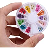 Nail Art Wheel,36pcs 12 Color Dried Dry Flower Nail Art Wheel Decoration Manicure Tips