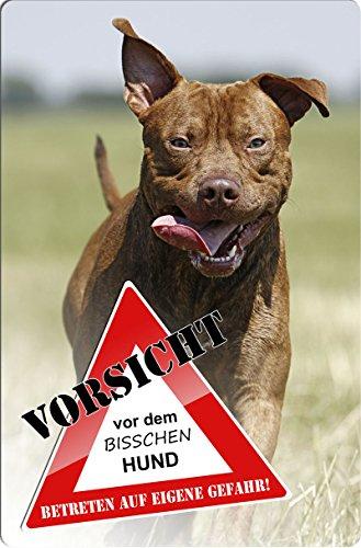 +++ American PITBULL Pit Bull Terrier - Metall WARNSCHILD Schild Hundeschild Sign - APT 06 T3
