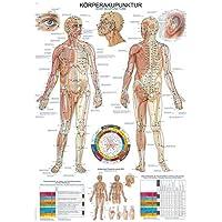 """Lehrtafel """"Körperakupunktur"""", 70x100cm"""