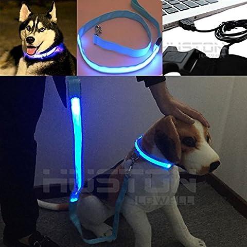 Aution House - Maggiore Cani Visibilità & Sicurezza - Collare - Guinzaglio USB Ricaricabile - Collare+Guinzaglio LED di Sicurezza per Cani - Collare Regolabile Lampeggiante - 3 Modalità - 7 Colori & 4 Formati - No Batterie (BLU M (40cm - 45cm))