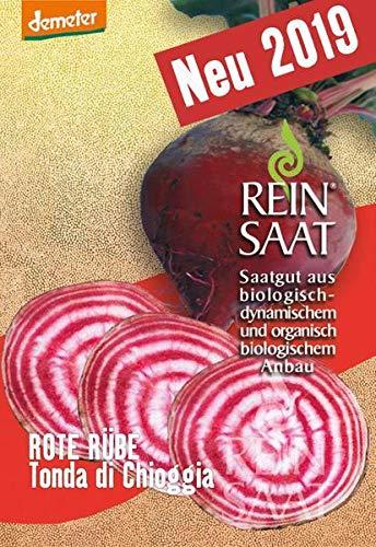 Reinsaat Rü14 Rote Rübe Tonda di Chioggia (Bio-Rote Rübensamen)