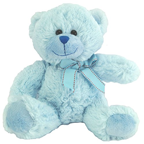 Teddy Bear Soft Toy Gift for a Baby or a present for a Christening, Baby Shower, the Child Attendant at a Wedding or the Sibling of a new arrival