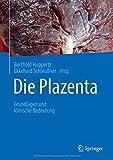 Die Plazenta: Grundlagen und klinische Bedeutung