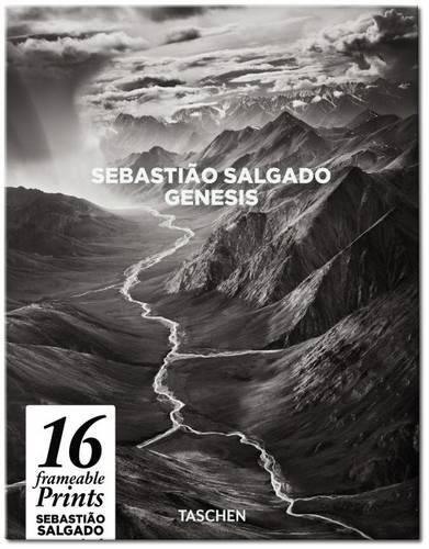 PX-SALGADO par Collectif